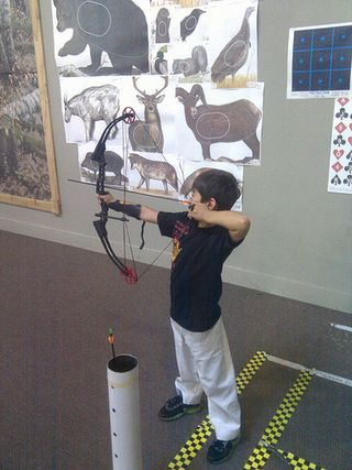 Archery_compound_bow